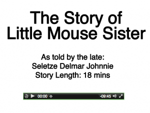 Little Mouse Sister 1